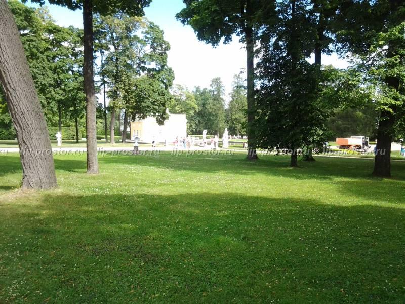 Озеленение парков скверов и садов в